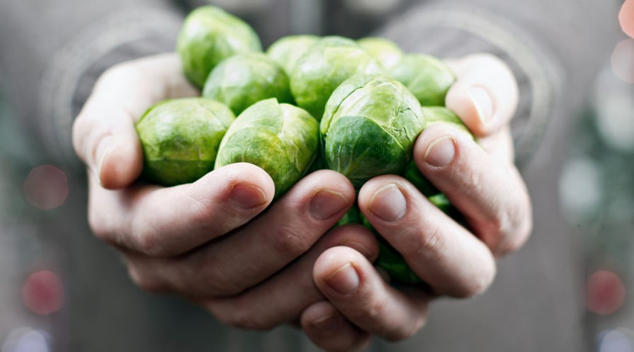 handful of brussel sprouts