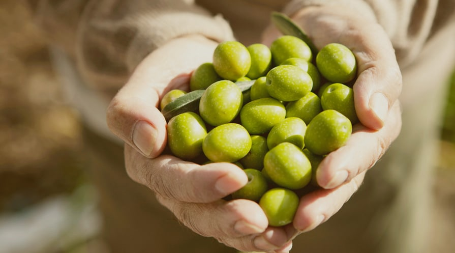 handful of olives