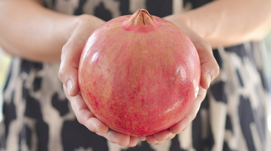 hands holding pomegrante